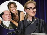 """NEW YORK, NY - NOVEMBER 19:  Actress Meryl Streep speaks during The Christopher & Dana Reeve Foundation 25th Anniversary """"A Magical Evening"""" Gala on November 19, 2015 in New York City.  (Photo by Bryan Bedder/Getty Images for Christopher & Dana Reeve Foundation)"""
