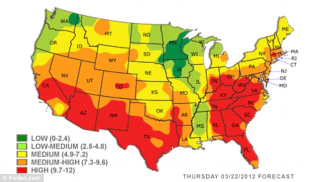 Pollen, at a glance: This U.S. map shows the forecasted levels of pollen throughout the country, with the South registering the highest