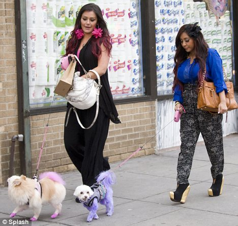 """Pet pooches: Snooki and her co-star Jennifer """"JWoww"""" Farley took their dogs for a walk"""