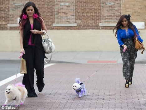 Puppy love: JWoww and Snooki appear to have dyed their dogs' fur pink and purple respectively
