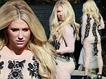 145317, EXCLUSIVE: Kesha meets up with friends in Los Angeles. Los Angeles, California - Sunday November 22, 2015. Photograph: Pedro Andrade, � PacificCoastNews. Los Angeles Office: +1 310.822.0419 sales@pacificcoastnews.com FEE MUST BE AGREED PRIOR TO USAGE
