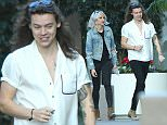 *** Fee of £150 applies for subscription clients to use images before 22.00 on 251115 *** EXCLUSIVE ALLROUNDERHarry Styles walking on Robertson Blvd with his stylist Lou Teasdale. Featuring: Harry Styles, Lou Teasdale Where: Los Angeles, California, United States When: 24 Nov 2015 Credit: WENN.com