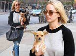 November 27, 2015: Jennifer Lawrence arrives back at her hotel with her dog Pippi in hand in New York City.\nMandatory Credit: Cepeda/INFphoto.com Ref: infusny-259