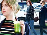 EXCLUSIVE: Dakota Johnson and Florence Welch meet up for a late lunch at La Poubelle along with a few friends\n\nPictured: Dakota Johnson and Florence Welch\nRef: SPL1183722  271115   EXCLUSIVE\nPicture by: Splash News\n\nSplash News and Pictures\nLos Angeles: 310-821-2666\nNew York: 212-619-2666\nLondon: 870-934-2666\nphotodesk@splashnews.com\n
