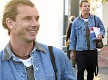 28 Nov 2015 - WEST HOLLYWOOD - USA  GAVIN ROSSDALE LOOKING JOYFUL AS HE DOES SOME RETAIL THERAPY SHOPPING WITH A MALE FRIEND AT RON HERMAN IN WEST HOLLYWOOD!   BYLINE MUST READ : XPOSUREPHOTOS.COM  ***UK CLIENTS - PICTURES CONTAINING CHILDREN PLEASE PIXELATE FACE PRIOR TO PUBLICATION ***  **UK CLIENTS MUST CALL PRIOR TO TV OR ONLINE USAGE PLEASE TELEPHONE  44 208 344 2007 ***