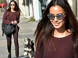 Jamie Chung Leaves Spot Animal Rescue With Her dog Ewok\n\nPictured: Jamie Chung\nRef: SPL1180244  011215  \nPicture by: All Access Photo\n\nSplash News and Pictures\nLos Angeles: 310-821-2666\nNew York: 212-619-2666\nLondon: 870-934-2666\nphotodesk@splashnews.com\n