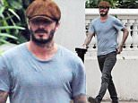 1 Dec 2015  - LONDON  - UK *** EXCLUSIVE ALL ROUND PICTURES *** EX-FOOTBALLER DAVID BECKHAM SPORTING A BEARD AS HE BRAVES THE COLD WEATHER BY WEARING A T-SHIRT SHOWING OFF HIS TATTOOS OUT AND ABOUT IN WEST LONDON. BYLINE MUST READ : XPOSUREPHOTOS.COM ***UK CLIENTS - PICTURES CONTAINING CHILDREN PLEASE PIXELATE FACE PRIOR TO PUBLICATION *** **UK CLIENTS MUST CALL PRIOR TO TV OR ONLINE USAGE PLEASE TELEPHONE  442083442007