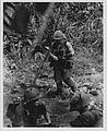 Marines Cross River Near Hill 479, August 1967 (16205813241).jpg