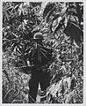 Marine of G Company, 2d Battalion, 4th Marines near Hill 479, August 1967 (16206847862).jpg