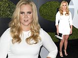 LOS ANGELES, CA - DECEMBER 03:  Comedian Amy Schumer attends the GQ 20th Anniversary Men Of The Year Party at Chateau Marmont on December 3, 2015 in Los Angeles, California.  (Photo by Jason Kempin/Getty Images)