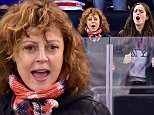 Celebrities attend Ottawa Senators vs New York Rangers ice hockey game at Madison Square Garden in New York City.  Pictured: Susan Sarandon and Miles Robbins Ref: SPL1189506  061215   Picture by: JD Images / Splash News  Splash News and Pictures Los Angeles: 310-821-2666 New York: 212-619-2666 London: 870-934-2666 photodesk@splashnews.com
