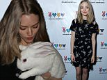 LOS ANGELES, CA - DECEMBER 08:  Actress Amanda Seyfried attends the Dylan's Candy BarN launch event at Dylan's Candy Bar on December 8, 2015 in Los Angeles, California.  (Photo by Tiffany Rose/Getty Images for Dylan's Candy Bar)