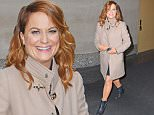 Mandatory Credit: Photo by Buzz Foto/REX Shutterstock (5490723a)\n Amy Poehler\n 'Today Show', New York, America - 10 Dec 2015\n \n