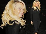 145945, EXCLUSIVE: Pamela Anderson with a fuller face seen at Chateau Marmont in Hollywood. Los Angeles, California - Thursday December 10, 2015. Photograph: © MHD, PacificCoastNews. Los Angeles Office: +1 310.822.0419 sales@pacificcoastnews.com FEE MUST BE AGREED PRIOR TO USAGE