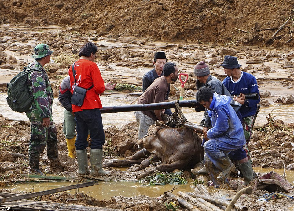 Desperation: One villager said he heard people screaming and pleading for help in the heavy rain and darkness. But he said he was unable to do anything other than run with his family to safety