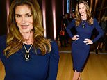 TORONTO, ON - DECEMBER 10:  Model Cindy Crawford attends Saks Fifth Avenue private cocktail and Q & A with Fern Mallis at AGO on December 10, 2015 in Toronto, Canada.  (Photo by George Pimentel/WireImage)