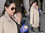 Lauren Silverman is spotted out and about with her son Eric Cowell in New York City.jpg