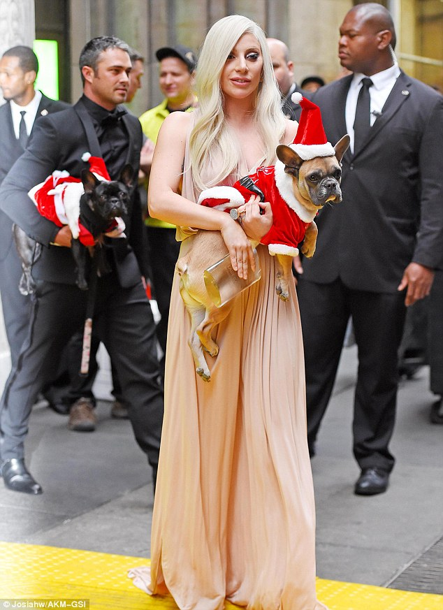 Festive fur babies: Lady Gaga and fiancé Taylor Kinney were seen leaving Cipriani 42nd St with their dogs on Friday after she scooped the Billboard Woman of The Year award