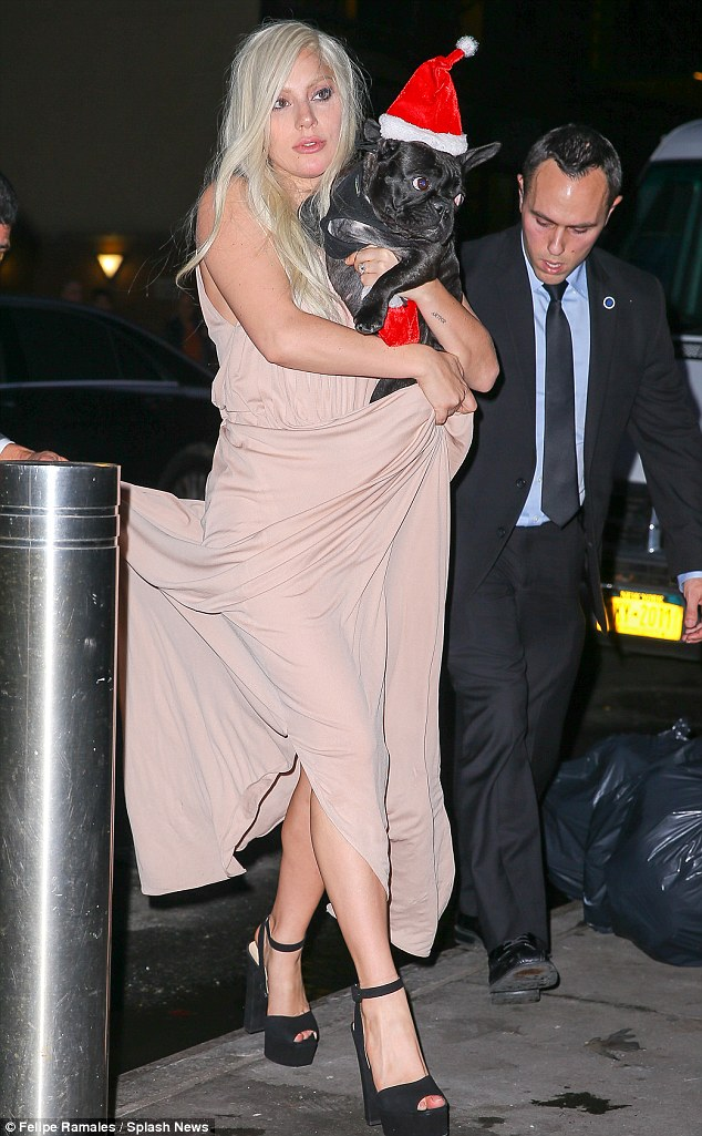 Finally home: The songstress was seen arriving back at her New York apartment with her French Bulldog Asia in her arms