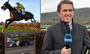 AP McCoy has tried - and failed - to replace the thrill of racing: I feel fat now... maybe