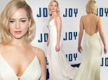"""NEW YORK, NY - DECEMBER 13:  Jennifer Lawrence attends the """"Joy"""" New York premiere at the Ziegfeld Theater on December 13, 2015 in New York City.  (Photo by D Dipasupil/FilmMagic)"""