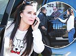 Picture Shows: Kyle Richards  December 12, 2015\n \n Reality star Kyle Richards stops by Original Brooklyn Water Bagel in Beverly Hills, California with her daughter Portia Umansky to pick up some party style sandwiches. While inside the restaurant Kyle was slapped with a parking ticket! \n \n Non-Exclusive\n UK Rights Only\n \n Pictures by : FameFlynet UK © 2015\n Tel : +44 (0)20 3551 5049\n Email : info@fameflynet.uk.com