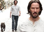 Picture Shows: Keanu Reeves  December 16, 2015\n \n Actor Keanu Reeves is spotted filming scenes for 'John Wick 2' in New York City, New York. In the scene Keanu could be seen walking a dog on the Brooklyn Bridge.\n \n Non-Exclusive\n UK RIGHTS ONLY\n \n Pictures by : FameFlynet UK © 2015\n Tel : +44 (0)20 3551 5049\n Email : info@fameflynet.uk.com