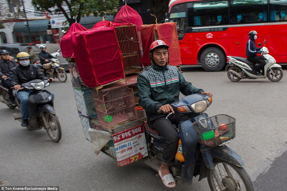 Even seasoned tourists are left wondering if there is anything these motorcyclists can't balance on the back of a rusty motorbike