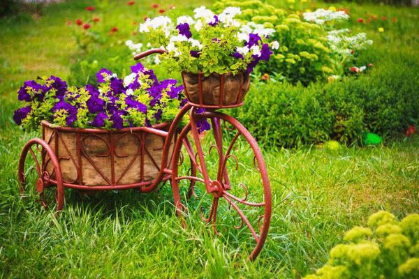 original fc3430  econet ru - 12 простых способов украсить сад