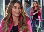 146191, Sofia Vergara is spotted filming a Quaker commercial in Venice. Los Angeles, California - Sunday December 20, 2015. Photograph: Pedro Andrade, © PacificCoastNews. Los Angeles Office: +1 310.822.0419 sales@pacificcoastnews.com FEE MUST BE AGREED PRIOR TO USAGE