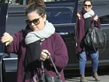 Picture Shows: Melissa McCarthy  December 23, 2015\n \n 'Ghostbusters' actress Melissa McCarthy spotted running some errands in Toluca Lake, California. Melissa stated in a recent interview that she was 'shocked' to find out that her sitcom 'Mike & Molly' had been canceled.\n \n Exclusive - All Round\n UK RIGHTS ONLY\n Pictures by : FameFlynet UK © 2015\n Tel : +44 (0)20 3551 5049\n Email : info@fameflynet.uk.com