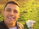 alexis_officia1 FOLLOWING Report user Alexis Sanchez