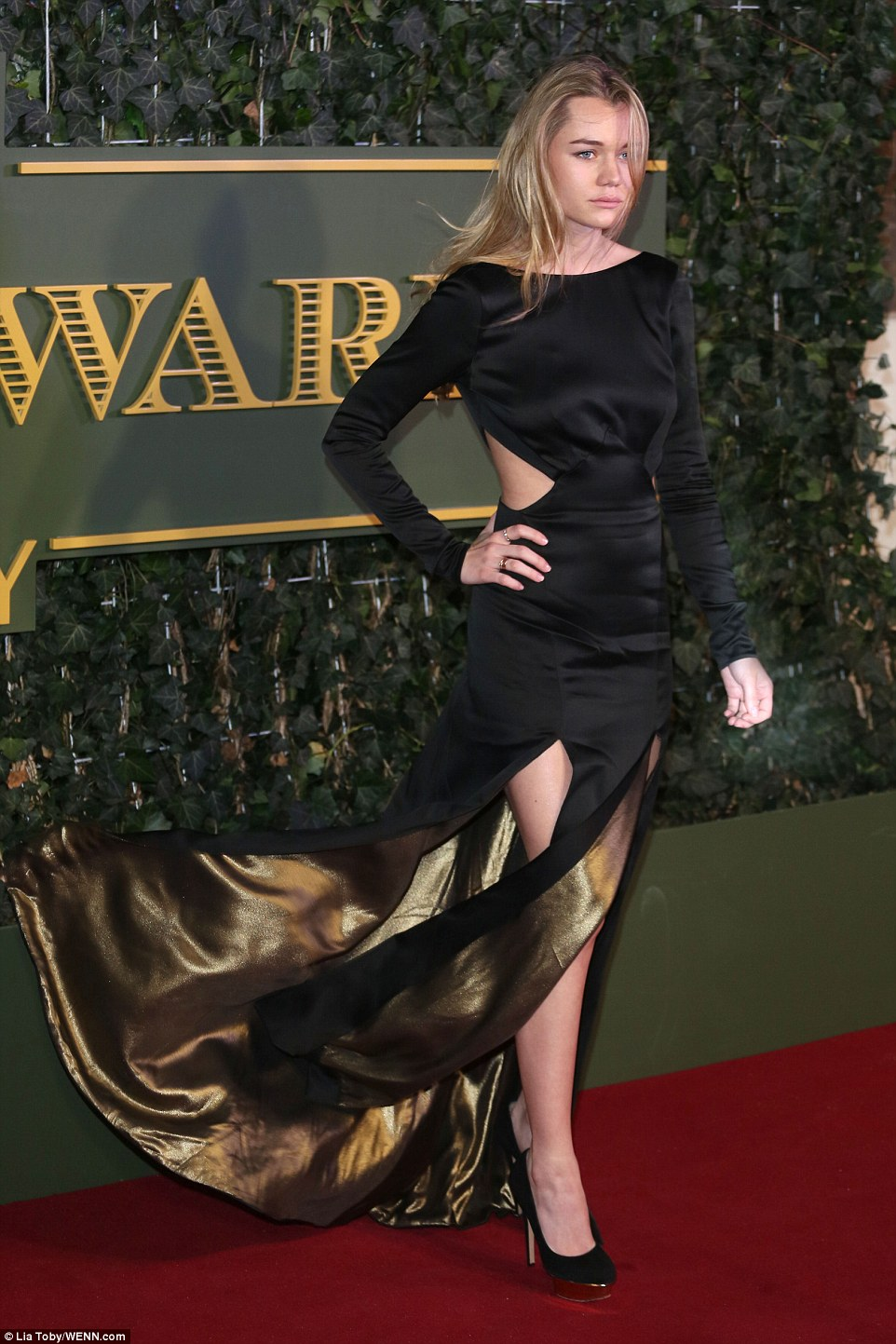 Suki Waterhouse's little sister, Immy, who also works as a model, wowed in a cut-out black and gold gown