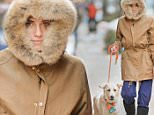 EXCLUSIVE TO INF.\nJanuary 8, 2016: Bundled up with her face almost buried in her fur hood, Allison Williams is pictured this morning walking her dog Moxie in the cold in New York City.\nMandatory Credit: Elder Ordonez/INFphoto.com Ref: infusny-160