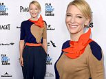 WEST HOLLYWOOD, CA - JANUARY 09:  Actress Cate Blanchett attends the 2016 Film Independent Filmmaker Grant and Spirit Award Nominees Brunch at BOA Steakhouse on January 9, 2016 in West Hollywood, California.  (Photo by Jason Merritt/Getty Images)