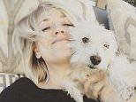 Kaley Cuoco 3w Chester and I can't wait to see you Wednesday the 16th at the Thousand Oaks Civc Arts plaza for the amazing @pawworks adoption event !!! Come, donate and maybe adopt an animal just in time for the holidays ! I adopted Chester from @pawworks and I can't wait to share his special story ??????