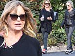 Actress Goldie Hawn and a friend were spotted while out for a walk in Brentwood.  The pair were dressed in dark colors, but seemed ot be enjoying the California sunshine after the rain.  Thursday, January 7, 2016. X17online.com\\nOK FOR WEB SITE USAGE AT 20PP\\nMAGAZINES NORMAL FEES\\nAny queries call X17 UK Office 0034 966 713 949\\nGary 0034 686421720\\nLynne 0034 611100011 \\nAlasdair 0034 965998830