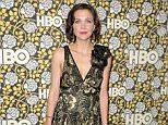 Mandatory Credit: Photo by Chelsea Lauren/Variety/REX/Shutterstock (5528325b)  Maggie Gyllenhaal  HBO Post Golden Globes Party, Roaming Red Carpet, Los Angeles, America - 10 Jan 2016