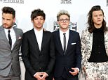 Recording artists Liam Payne, Louis Tomlinson, Niall Horan and Harry Styles of One Direction arrive at the 2015 American Music Awards at Microsoft Theater on November 22, 2015 in Los Angeles, California.  (Photo by David Livingston/Getty Images) Harry Styles wearing floral print Gucci suit