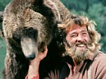 """THE LIFE AND TIMES OF GRIZZYLY ADAMS -- """"A Bear's Life"""" Episode 3 -- Pictured: (l-r) Bozo the Bear as Ben, Dan Haggerty as James 'Grizzly' Adams -- (Photo by: Frank Carroll/NBC/NBCU Photo Bank)"""