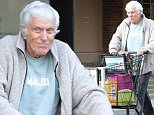 Picture Shows: Dick Van Dyke  January 16, 2016\n \n 51949176 Former actor and comedian Dick Van Dyke was seen making a quick stop at Ralph's Grocery Store in Malibu, California.\n \n Non-Exclusive\n UK RIGHTS ONLY\n \n Pictures by : FameFlynet UK © 2016\n Tel : +44 (0)20 3551 5049\n Email : info@fameflynet.uk.com
