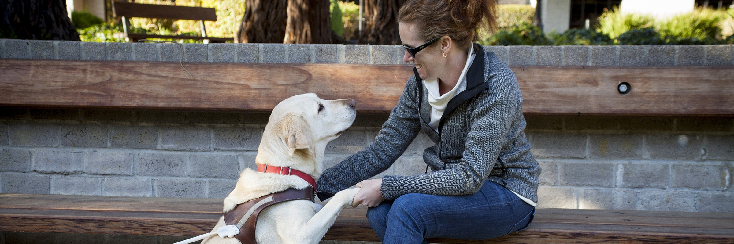 Guide Dogs Student Programs