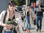 Picture Shows: Selma Blair  January 16, 2016\n \n 'American Crime Story' actress Selma Blair spotted out running errands with her newly adopted puppy and a friend in West Hollywood, California.\n \n Non-Exclusive\n UK RIGHTS ONLY\n \n Pictures by : FameFlynet UK © 2016\n Tel : +44 (0)20 3551 5049\n Email : info@fameflynet.uk.com