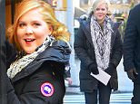 Amy Schumer steps out on the set of her TV show in NYC and is all smiles amidst accusations from two comedians who claim Amy may have stolen jokes from them.\n\nPictured: Amy Schumer\nRef: SPL1212919  210116  \nPicture by: Turgeon-Steffman / Splash News\n\nSplash News and Pictures\nLos Angeles: 310-821-2666\nNew York: 212-619-2666\nLondon: 870-934-2666\nphotodesk@splashnews.com\n