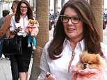 *EXCLUSIVE* Beverly Hills, CA - Restaurateur and reality star Lisa Vanderpump carries her cute Pomeranian as she makes a stop at one of her restaurants, Villa Blanca today.  Looks like Lisa was making the rounds and making sure things were in order before the weekend.\nAKM-GSI         January 22, 2016\nTo License These Photos, Please Contact :\nSteve Ginsburg\n(310) 505-8447\n(323) 423-9397\nsteve@akmgsi.com\nsales@akmgsi.com\nor\nMaria Buda\n(917) 242-1505\nmbuda@akmgsi.com\nginsburgspalyinc@gmail.com