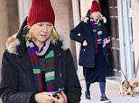 EXCLUSIVE: Naomi Watts walks her dog in the freezing cold in NYC\n\nPictured: Naomi Watts\nRef: SPL1212301  210116   EXCLUSIVE\nPicture by: Jackson Lee / Splash News\n\nSplash News and Pictures\nLos Angeles: 310-821-2666\nNew York: 212-619-2666\nLondon: 870-934-2666\nphotodesk@splashnews.com\n