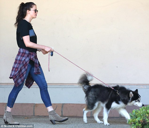 Sunday morning style: The statuesque 6ft 2ins model was casually dressed in a black T-shirt, skinny jeans cropped above her ankles and suede booties while Koda, bred for colder climes, wore his shaggy coat
