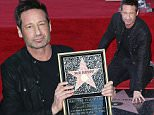Mandatory Credit: Photo by Jim Smeal/BEI/Shutterstock (5567587k)\nDavid Duchovny\nDavid Duchovny honored with s star on yhe Hollywood Walk Of Fame, Los Angeles, America - 25 Jan 2016\nDavid Duchovny Honored With A Star On The Hollywood Walk Of Fame, Los Angeles, America\n