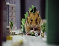 "Tiny Hamster Becomes A ""Giant Monster"" And Terrorizes A Miniature City"