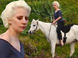 *PREMIUM EXCLUSIVE* **MUST CALL FOR PRICING** Malibu, CA - We all know Lady Gaga is an impeccable singer and great actress, but she is also an equestrian master! This afternoon, we spotted the Globo Awards winner enjoying her afternoon riding a stunning white stallion! Barefooted and keeping her ensemble simple, Gaga enjoyed the sightseeing views and just relaxed for a few minutes.\nAKM-GSI    January  28, 2016\nTo License These Photos, Please Contact :\nSteve Ginsburg\n(310) 505-8447\n(323) 423-9397\nsteve@akmgsi.com\nsales@akmgsi.com\nor\nMaria Buda\n(917) 242-1505\nmbuda@akmgsi.com\nginsburgspalyinc@gmail.com